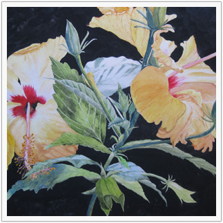 Yellow Hibiscus by Alice